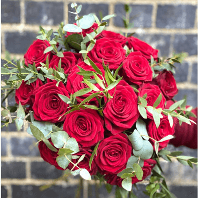 Valentine Classic Red Roses 1